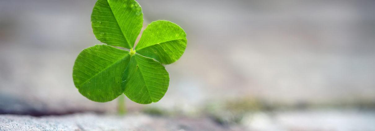 A Little Luck Can Go A Long Way